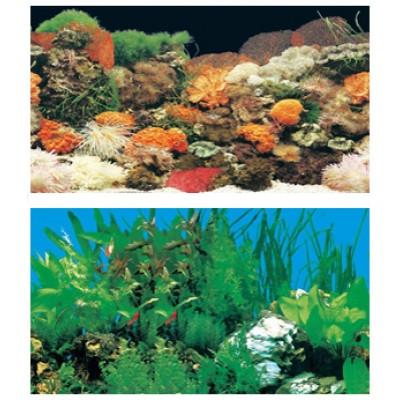 Задний фон для аквариума высотой: 30 см.