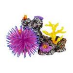 Кораллы в аквариум